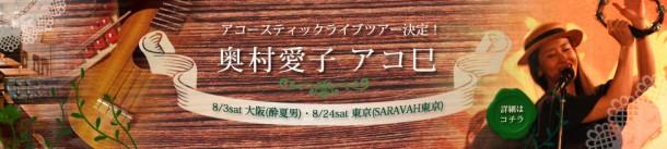 2013年アコースティックライブツアー「アコ巳」